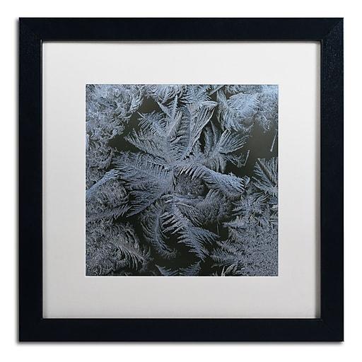 """Trademark Fine Art ''Frost Star'' by Kurt Shaffer 16"""" x 16"""" White Matted Black Frame (KS01074-B1616MF)"""