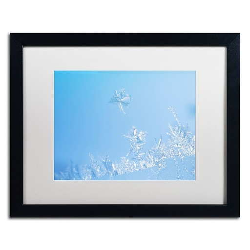 "Trademark Fine Art ''Window Frost'' by Kurt Shaffer 16"" x 20"" White Matted Black Frame (KS01078-B1620MF)"