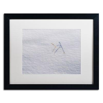 Trademark Fine Art ''Winters Bleak Beauty'' by Kurt Shaffer 16