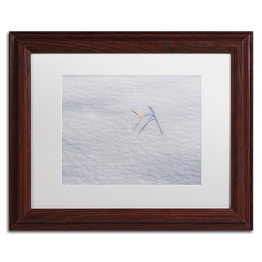 "Trademark Fine Art ''Winters Bleak Beauty'' by Kurt Shaffer 11"" x 14"" White Matted Wood Frame (KS01079-W1114MF)"