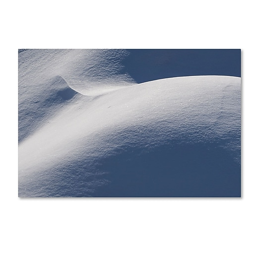 """Trademark Fine Art ''Abstract Snow Mound 3'' by Kurt Shaffer 22"""" x 32"""" Canvas Art (KS01082-C2232GG)"""