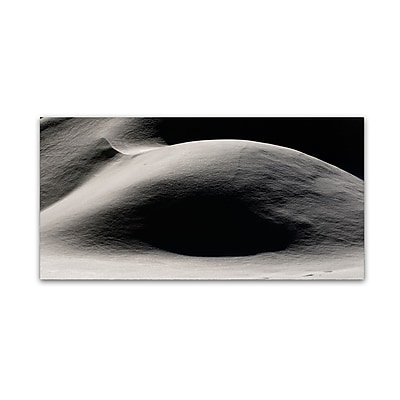 Trademark Fine Art ''Abstract Snow Mound 4'' by Kurt Shaffer 10