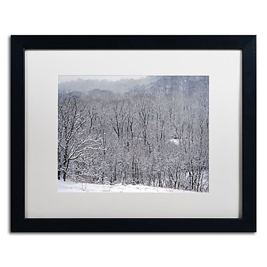 Trademark Fine Art ''Quiet Heavy Snowfall'' by Kurt Shaffer 16