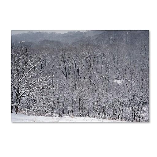 "Trademark Fine Art ''Quiet Heavy Snowfall'' by Kurt Shaffer 12"" x 19"" Canvas Art (KS01086-C1219GG)"