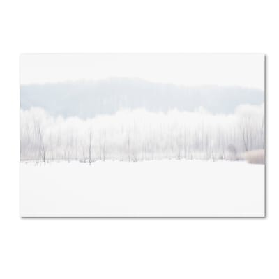 Trademark Fine Art ''Abstract Winter Beaver Marsh'' by Kurt Shaffer 12