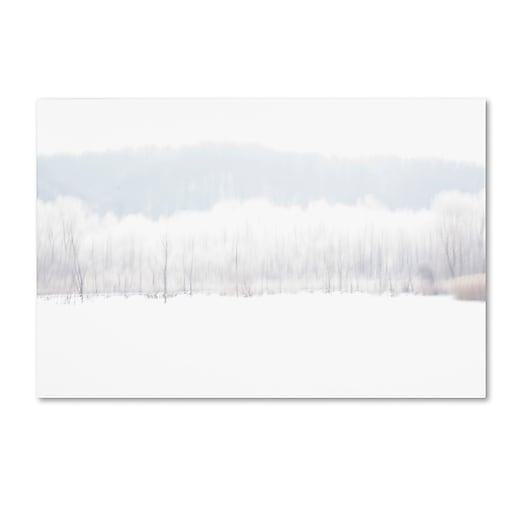 "Trademark Fine Art ''Abstract Winter Beaver Marsh'' by Kurt Shaffer 12"" x 19"" Canvas Art (KS01091-C1219GG)"