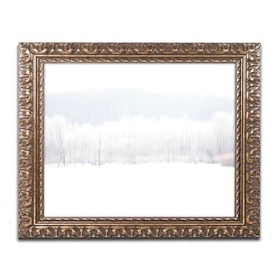 Trademark Fine Art ''Abstract Winter Beaver Marsh'' by Kurt Shaffer 16