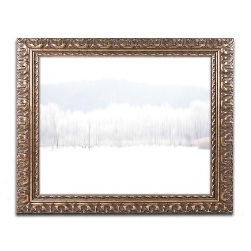 """Trademark Fine Art ''Abstract Winter Beaver Marsh'' by Kurt Shaffer 16"""" x 20"""" Ornate Frame (KS01091-G1620F)"""