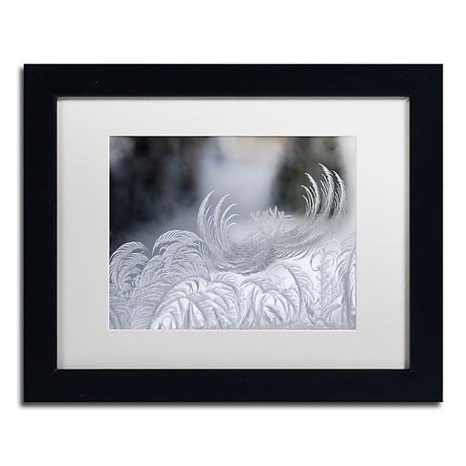 "Trademark Fine Art ''February Window Frost'' by Kurt Shaffer 11"" x 14"" White Matted Black Frame (KS01093-B1114MF)"