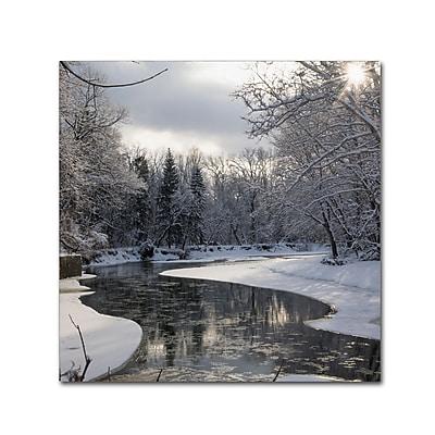 Trademark Fine Art ''Fresh Snowfall on the River'' by Kurt Shaffer 24