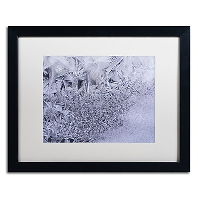 Trademark Fine Art ''Gradation of Frost on a Window'' by Kurt Shaffer 16