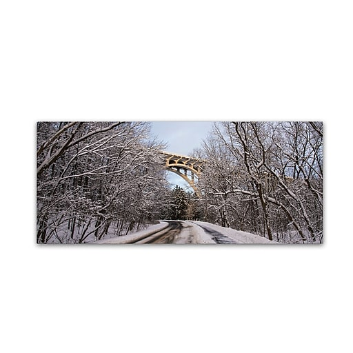 "Trademark Fine Art ''Heavy Snowfall Along the Parkway 2'' by Kurt Shaffer 8"" x 19"" Canvas Art (KS01099-C819GG)"