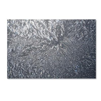 Trademark Fine Art ''Sunlight Frost Abstract'' by Kurt Shaffer 30