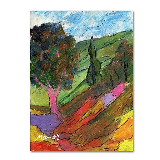 "Trademark Fine Art ''Untouched Hillside'' by Manor Shadian 35"" x 47"" Canvas Art (MA0610-C3547GG)"