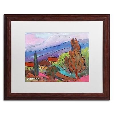 Trademark Fine Art ''Summer Blush'' by Manor Shadian 16