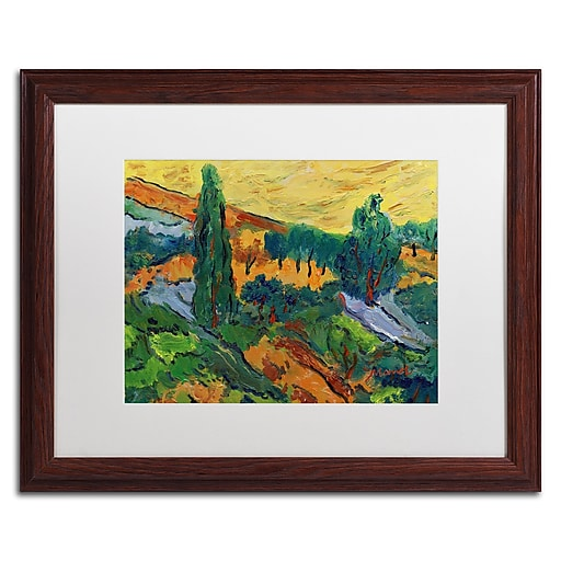 """Trademark Fine Art ''Sunset Ends a Summer Day'' by Manor Shadian 16"""" x 20"""" White Matted Wood Frame (MA0613-W1620MF)"""