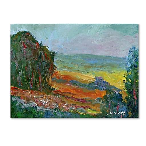 "Trademark Fine Art ''Fall Fields'' by Manor Shadian 24"" x 32"" Canvas Art (MA0617-C2432GG)"