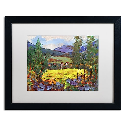 """Trademark Fine Art ''Gilded Glade'' by Manor Shadian 16"""" x 20"""" White Matted Black Frame (MA0619-B1620MF)"""