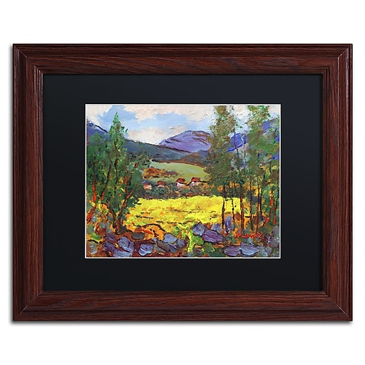 """Trademark Fine Art ''Gilded Glade'' by Manor Shadian 11"""" x 14"""" Black Matted Wood Frame (MA0619-W1114BMF)"""