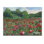 "Trademark Fine Art ''Poppy Field Wood'' by Manor Shadian 18"" x 24"" Canvas Art (MA0620-C1824GG)"