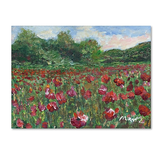 "Trademark Fine Art ''Poppy Field Wood'' by Manor Shadian 24"" x 32"" Canvas Art (MA0620-C2432GG)"