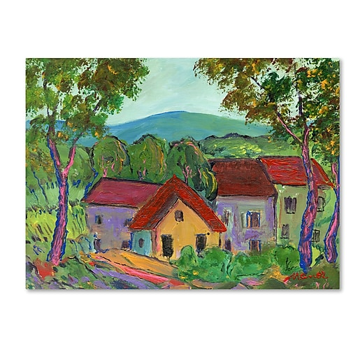 "Trademark Fine Art ''Rainbow Home'' by Manor Shadian 14"" x 19"" Canvas Art (MA0621-C1419GG)"