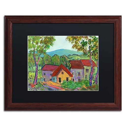 """Trademark Fine Art ''Rainbow Home'' by Manor Shadian 16"""" x 20"""" Black Matted Wood Frame (MA0621-W1620BMF)"""