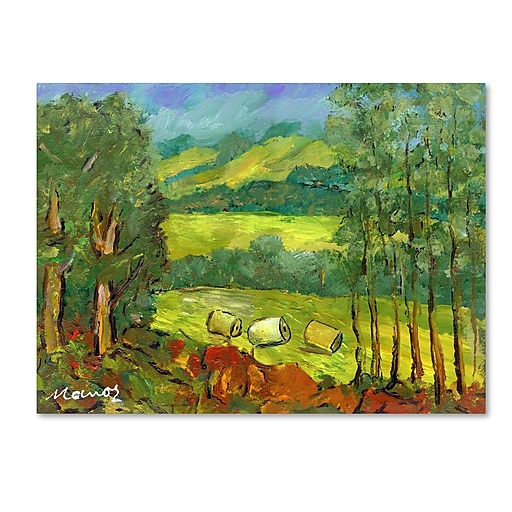 """Trademark Fine Art ''Balds in the Field'' by Manor Shadian 24"""" x 32"""" Canvas Art (MA0622-C2432GG)"""