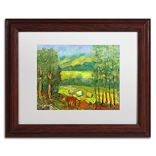 "Trademark Fine Art ''Balds in the Field'' by Manor Shadian 11"" x 14"" White Matted Wood Frame (MA0622-W1114MF)"