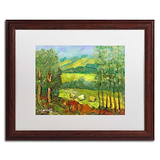 "Trademark Fine Art ''Balds in the Field'' by Manor Shadian 16"" x 20"" White Matted Wood Frame (MA0622-W1620MF)"
