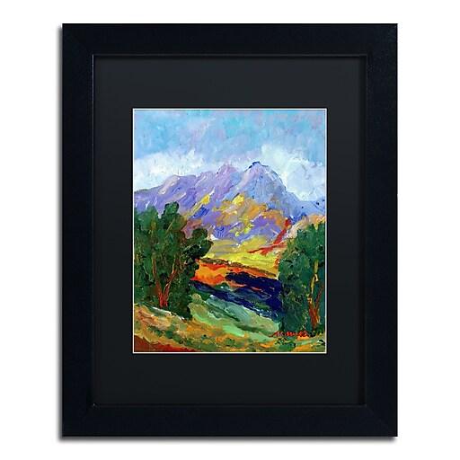 "Trademark Fine Art ''Autumn Amber California North'' by Manor Shadian 11"" x 14"" Black Matted Black Frame (MA0623-B1114BMF)"