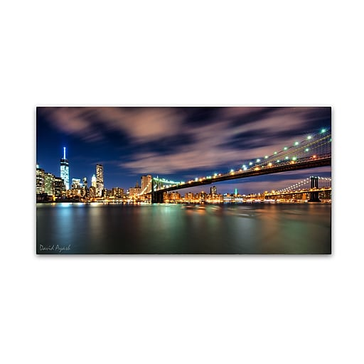 "Trademark Fine Art ''Brooklyn Bridge and Downtown'' by David Ayash 16"" x 32"" Canvas Art (MA0628-C1632GG)"
