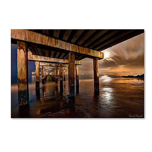 "Trademark Fine Art ''Coney Island Pier by Moonlight'' by David Ayash 30"" x 47"" Canvas Art (MA0631-C3047GG)"