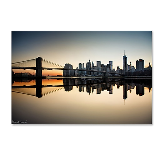 "Trademark Fine Art ''Downtown NY'' by David Ayash 30"" x 47"" Canvas Art (MA0636-C3047GG)"
