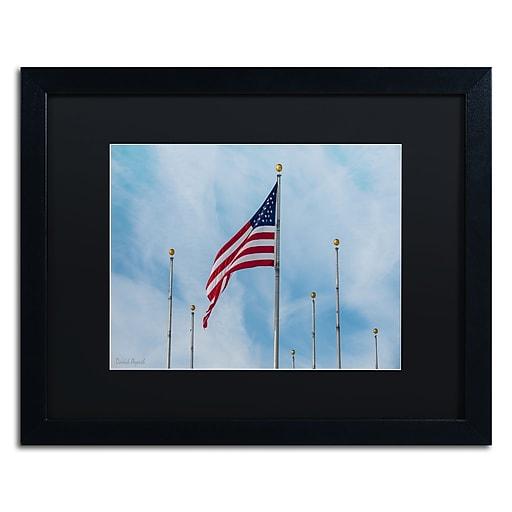 "Trademark Fine Art ''Red White & Blue'' by David Ayash 16"" x 20"" Black Matted Black Frame (MA0640-B1620BMF)"