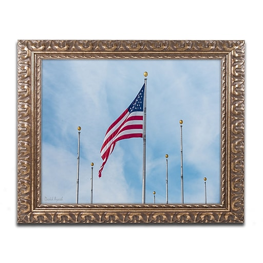 "Trademark Fine Art ''Red White & Blue'' by David Ayash 11"" x 14"" Ornate Frame (MA0640-G1114F)"