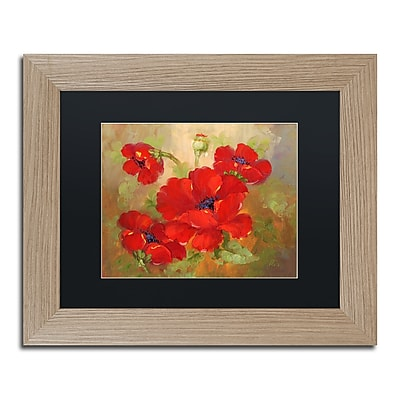 Trademark Fine Art ''Poppies'' by Rio 11