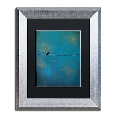 Trademark Fine Art ''Lone Bird Blue'' by Nicole Dietz 11