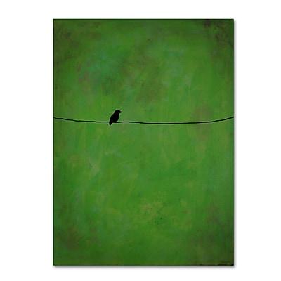Trademark Fine Art ''Lone Bird Green'' by Nicole Dietz 35