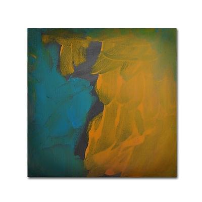 Trademark Fine Art ''Rogue'' by Nicole Dietz 14