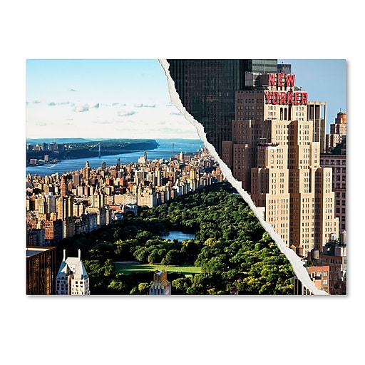 "Trademark Fine Art ''Central Park View'' by Philippe Hugonnard 24"" x 32"" Canvas Art (PH0085-C2432GG)"