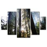 Trademark Fine Art ''Sunrays'' by Pierre Leclerc 3.3' x 4.8' Multi Panel Art Set (PL0070-P5-SET)