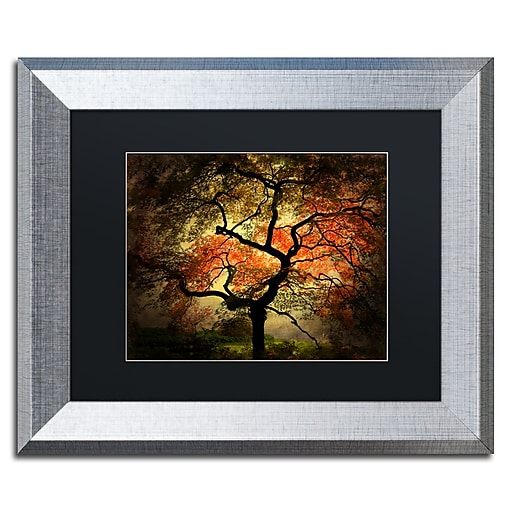 """Trademark Fine Art ''Japanese'' by Philippe Sainte-Laudy 11"""" x 14"""" Black Matted Silver Frame (PSL020-S1114BMF)"""