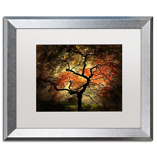 """Trademark Fine Art ''Japanese'' by Philippe Sainte-Laudy 16"""" x 20"""" White Matted Silver Frame (PSL020-S1620MF)"""