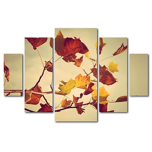 Trademark Fine Art ''Still Fall'' by Philippe Sainte-Laudy 3.3' x 4.8' Multi Panel Art Set (PSL0416-P5-SET)