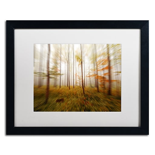 "Trademark Fine Art ''Autumn Go Fast'' by Philippe Sainte-Laudy 16"" x 20"" White Matted Black Frame (PSL0419-B1620MF)"