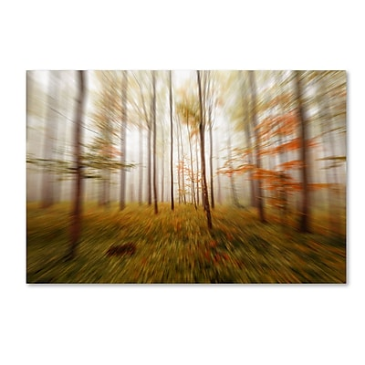 Trademark Fine Art ''Autumn Go Fast'' by Philippe Sainte-Laudy 22