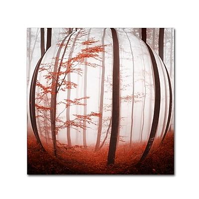 Trademark Fine Art ''Autumn to Burn'' by Philippe Sainte-Laudy 35