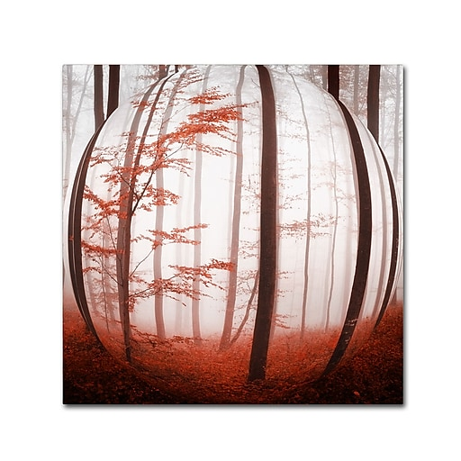 "Trademark Fine Art ''Autumn to Burn'' by Philippe Sainte-Laudy 18"" x 18"" Canvas Art (PSL0420-C1818GG)"