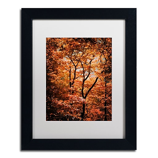 "Trademark Fine Art ''Autumn Whispers'' by Philippe Sainte-Laudy 11"" x 14"" White Matted Black Frame (PSL0421-B1114MF)"